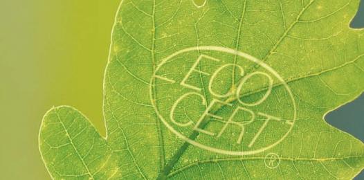 AUDITEUR AGRICULTURE BIOLOGIQUE H/F (Poste en CDD basé dans les départements du 50-35)