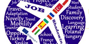 logo job shadowing